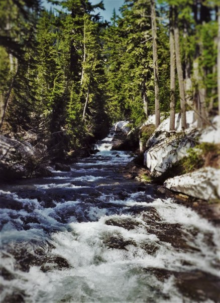 Van Trump Creek above Narada Falls in Mt Rainier National Park 2traveldads.com