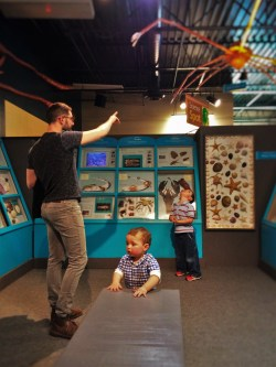 Chris Taylor and Dudes learned about sea shells at the Butterfly Pavilion Denver Colorado 1