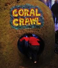 LittleMan crawling through tubes at Denver Downtown Aquarium 1