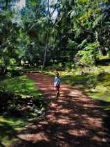 LittleMan on Shadowy Path at Bloedel Reserve Bainbridge Island 2