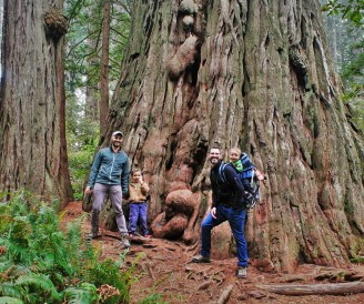 Taylor Family at Redwoods California 2traveldads.com