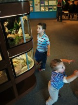 Taylor Kids and bug tanks at the Butterfly Pavilion Denver Colorado 1