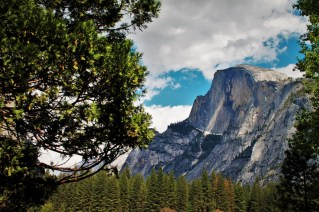 Half Dome from Yosemite Valley Floor in Yosemite National Park 5