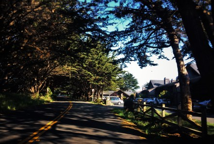 Staying At The Bodega Bay Lodge Quite Luxury On The