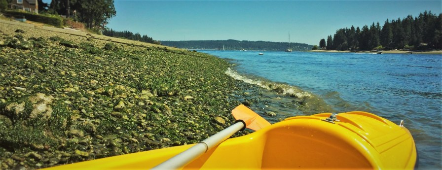 Kayak on Rich Passage Bainbridge Island header