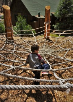 LittleMan on rope web at Evergreen Lodge at Yosemite National Park 2traveldads.com