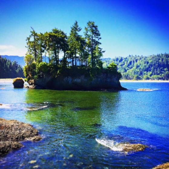 Rock Island at Salt Creek Olympic Peninsula 1