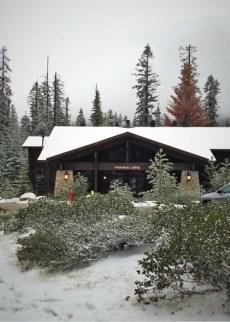 Snow at Wuksachi Lodge Sequoia National Park 2traveldads.com