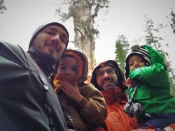 Taylor Family and General Grant Tree Kings Canyon National Park California 2traveldads.com