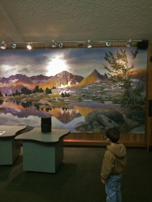 Wildlife Mural at Grant Village Visitors Center Kings Canyon National Park 1