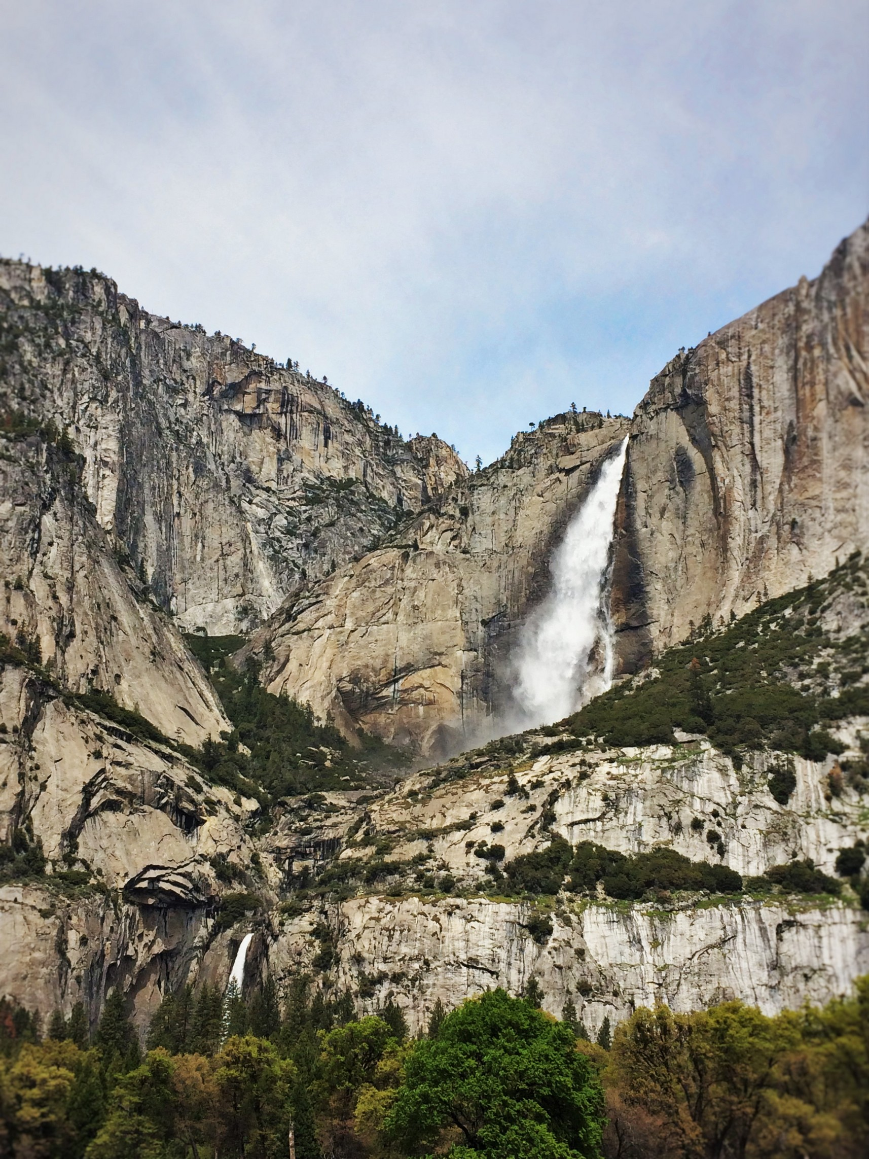 Upper Yosemite Falls from Valley Floor in Yosemite National Park 5