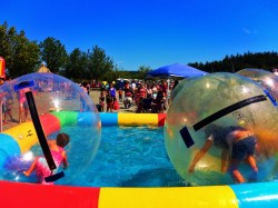 Kids in hamster balls at Anacortes Waterfront Festival 1