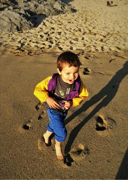 LittleMan at Bodega Head beach Bodega Bay Lodge 1