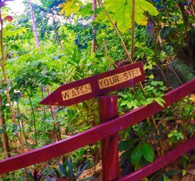 At the Blue Hole St Anns Ocho Rios Jamaica 5