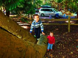 Taylor Kids Camping at Washington Park Anacortes 1