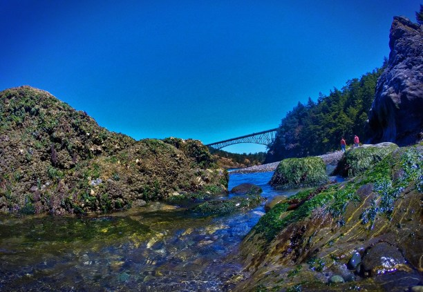 View of Deception Pass Bridge Deception Pass State Park Whidbey Island with tidepool