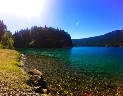 Cove on Lake Cushman Olympic Peninsula 1