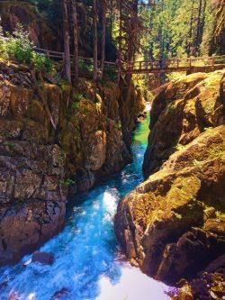 Foot bridge over Ohanapecosh River Silver Falls Mt Rainier National Park 1