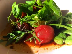 Braised Wagyu beef and tomato destination dining Pretty Fork Inn at Ships Bay Orcas Island 1