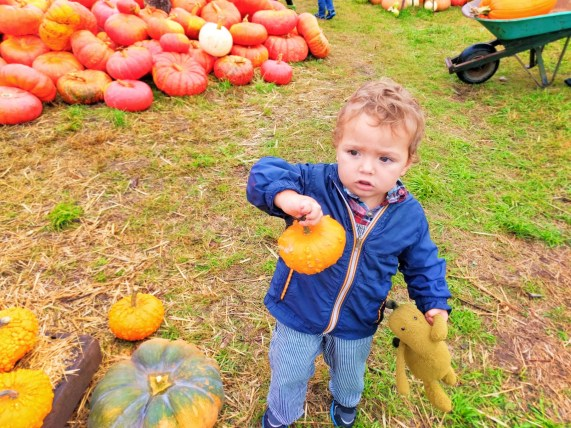 taylor-kids-in-pumpkin-patch-fall-tradition-1