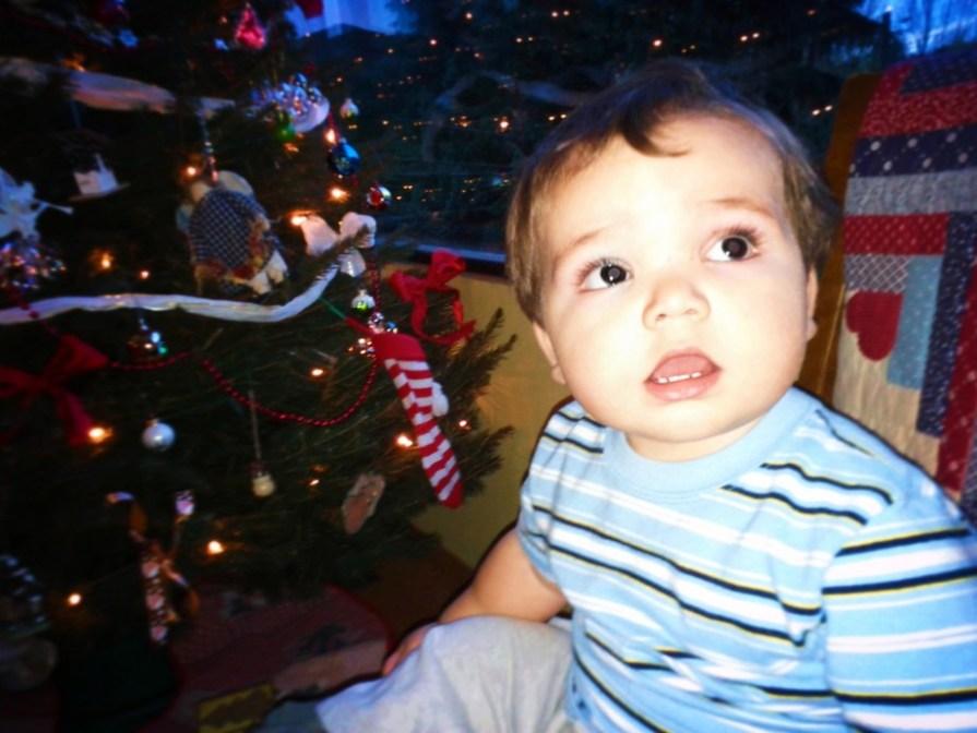 LittleMan and Christmas Tree 2012