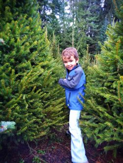 Supporting a local Christmas tree farm is a sustainable practice and way to celebrate the holidays while helping families get through their year.