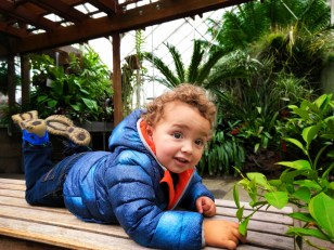 Taylor Kids in Volunteer Park Conservatory Capitol Hill Seattle 3