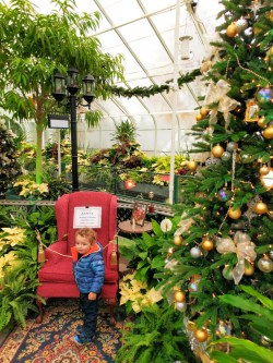 Taylor Kids in Volunteer Park Conservatory Capitol Hill Seattle 5