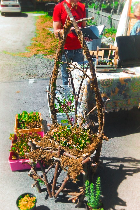 Forest Chair Port Townsend Farmers Market 1