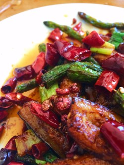Spicy Chinese Egglpant dinner 1