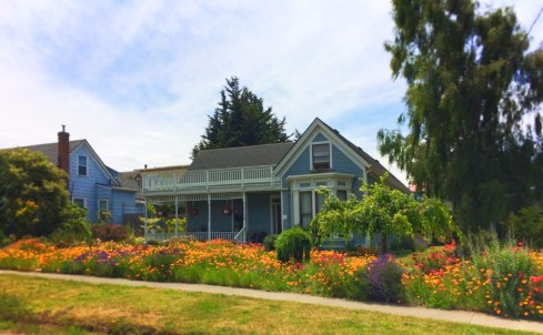 Victorian home with flowers Uptown Port Townsend 1
