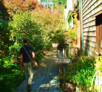 Filbert Steps Napier Lane Telegraph Hill San Francisco 1