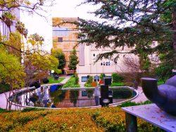 Outdoor Sculpture Garden at LACMA Los Angeles 1