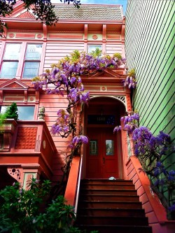 Victorian Row house in San Francisco with wysteria 1