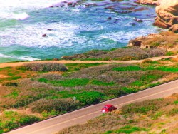 Vintage VW Bug at Cabrillo National Monument 1