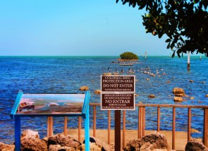 Bird Refuge at Biscayne National Park 1