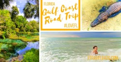 A Florida Gulf Coast road trip is full of unique nature, beautiful beaches and wildlife unlike anywhere. Manatees and pristine springs make unforgettable family travel moments. 2traveldads.com