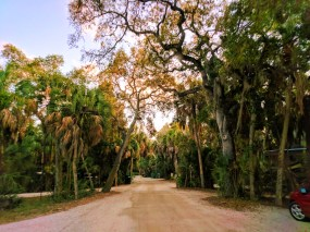 Fort De Soto Park Campgroung Pinellas County Florida 1