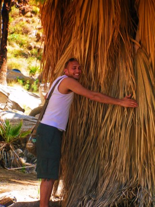 Rob Taylor hugging palm at Indian Canyons at Agua Caliente Palm Springs 1