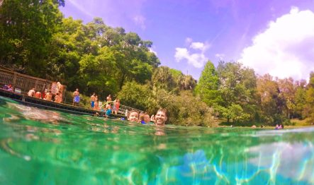 Taylor Family in Rainbow River at Rainbow Springs State Park 3