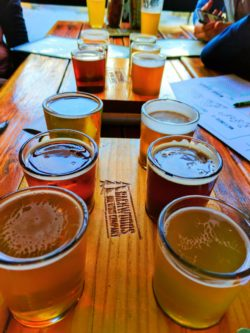 Beer Flights at Backwoods Brewing Carson Columbia River Gorge 1
