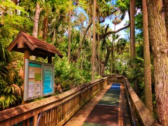 Boardwalk hiking at Blue Spring State Park Daytona Beach 2