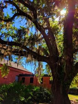 Exterior of Georgia Sea Turtle Center Jekyll Island Golden Isles Georgia 2