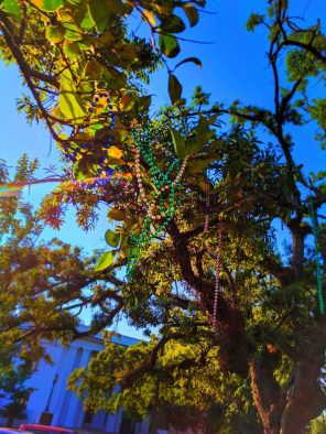 Mardi Gras beads and Historic Home in Mobile Alabama historic distric 1
