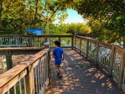 Taylor Family at Big Cypress National Preserve 2