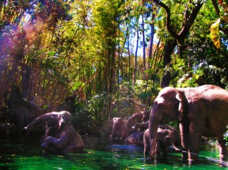 Elephant bathing pool Jungle Cruise Adventureland Disneyland 1