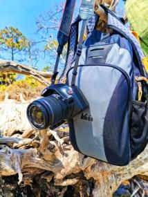 REI laptop backpack at Driftwood Beach Jekyll Island Golden Isles 1