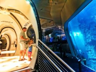 Taylor Family at Discovery World aquarium sonar exhibit Milwaukee Wisconsin 1
