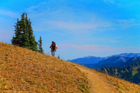 Taylor Family hiking Hurricane Ridge Olympic National Park 2