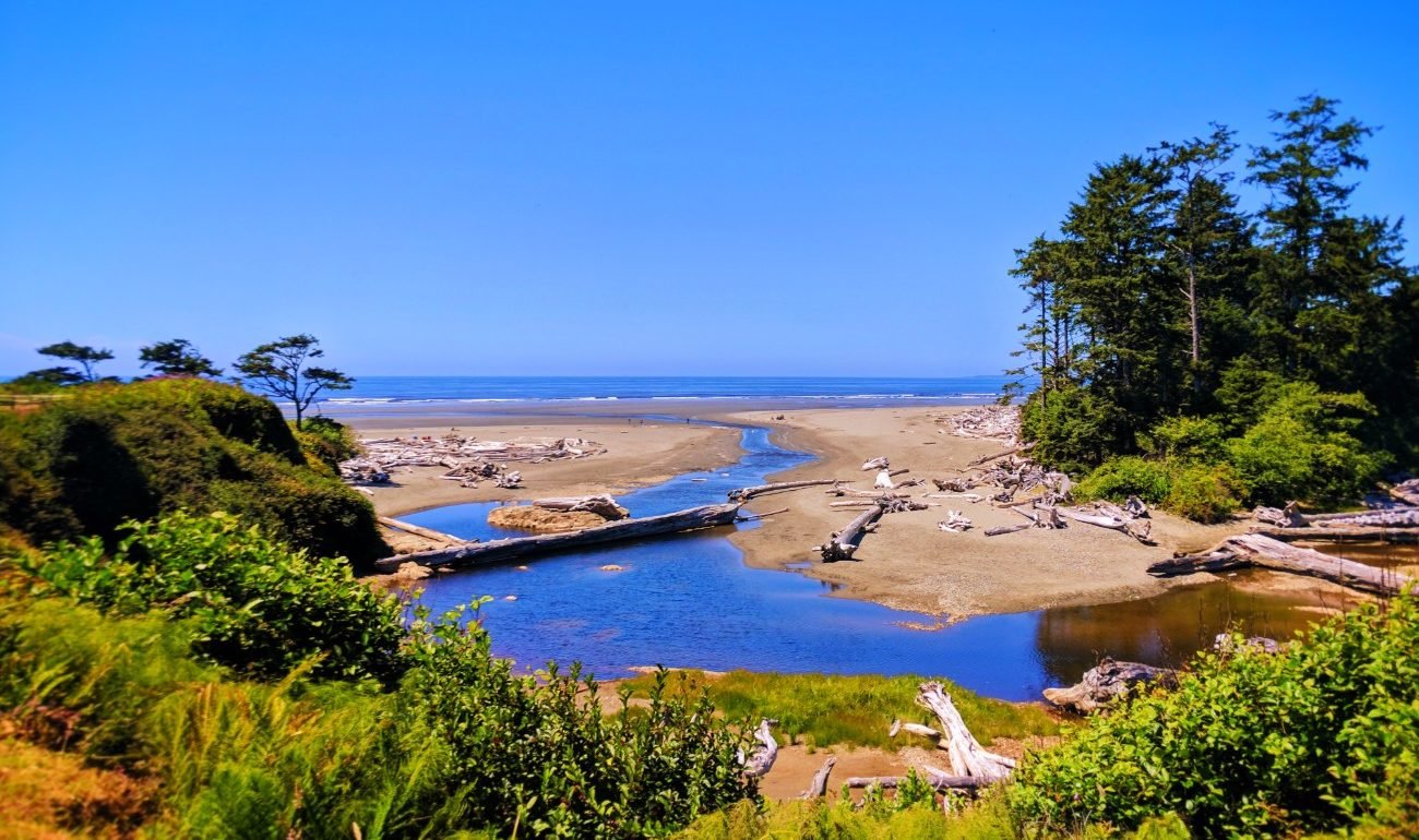 Beach from Kalaloch Lodge Olympic National Park 1